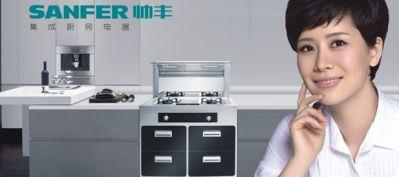 帅丰集成灶官网_帅丰集成灶官方旗舰店